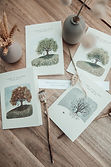 Tree greeting card collection