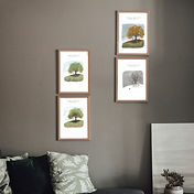 Oak%20Tree%20wall%20art%20collection_edi