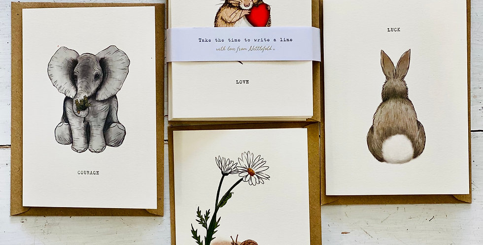 Occasion collection - pack of cards