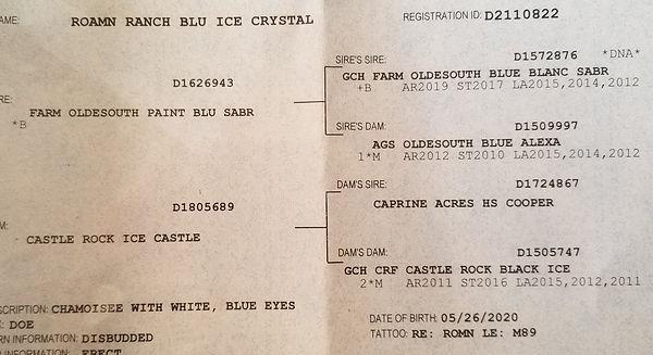 cassies crystal 2020.jpg