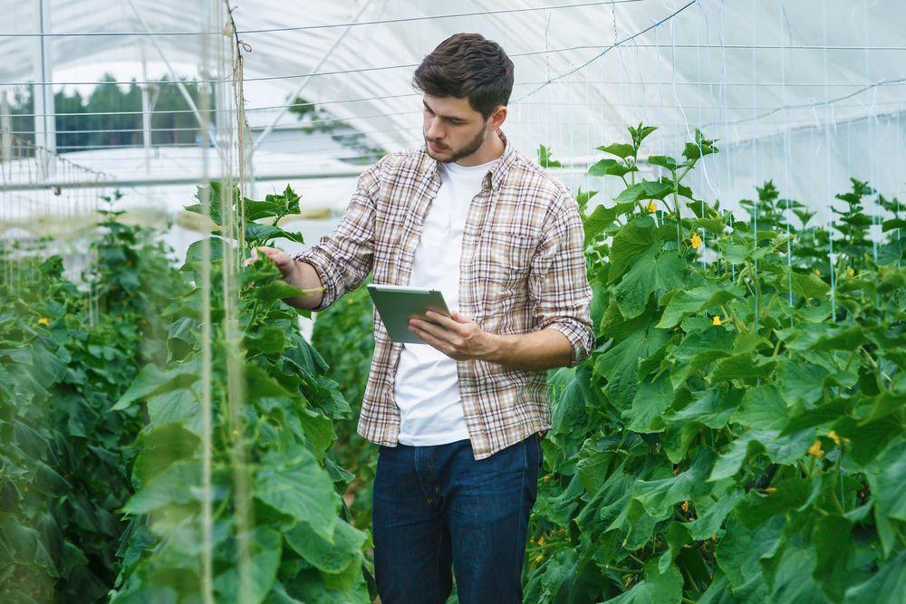 engenheiro agronomo apontando operações no agronegocio com tablet e app da simova