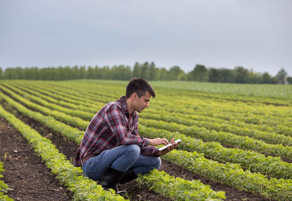 agricultor tomando decisões com base nos apontamentos eletronicos da fazenda