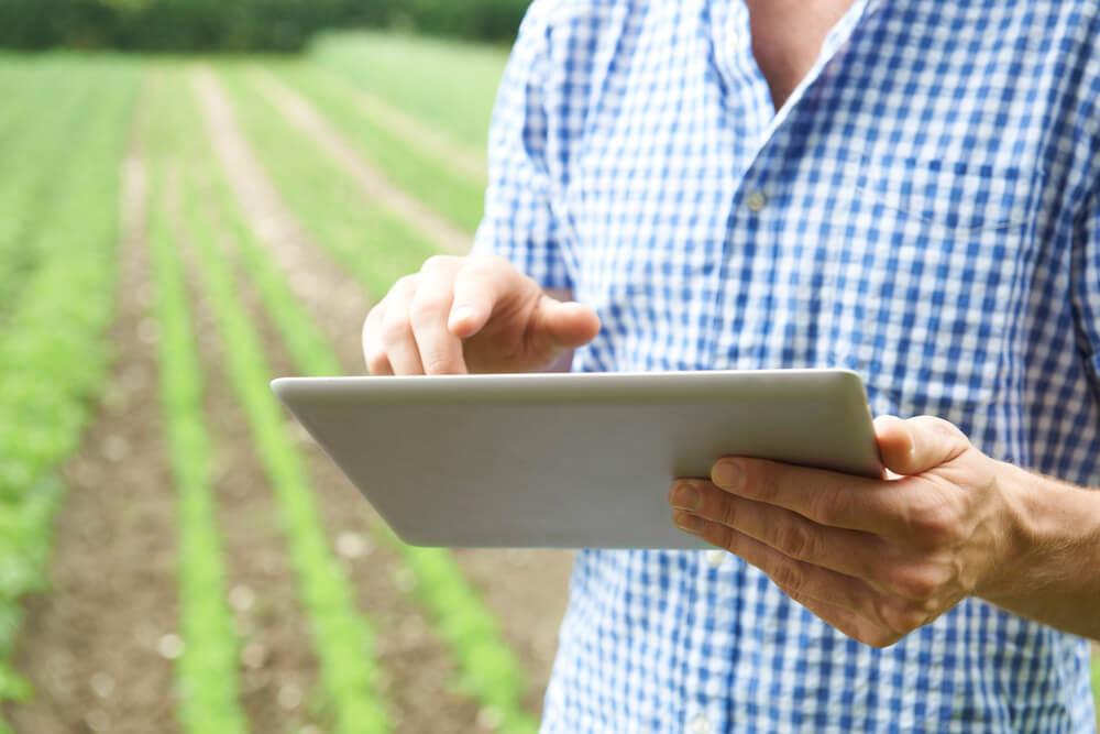 empreendedor do agronegócio apontando com tablet sua plantação
