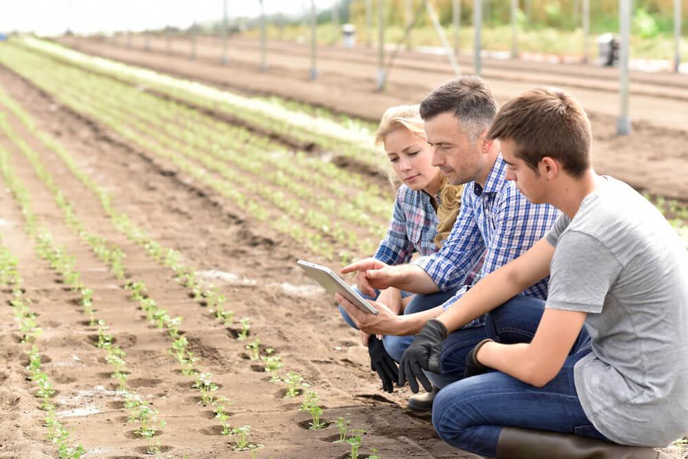 familia discutindo resultados no agronegócio através de teblet na fazendo com apontamento eletronico