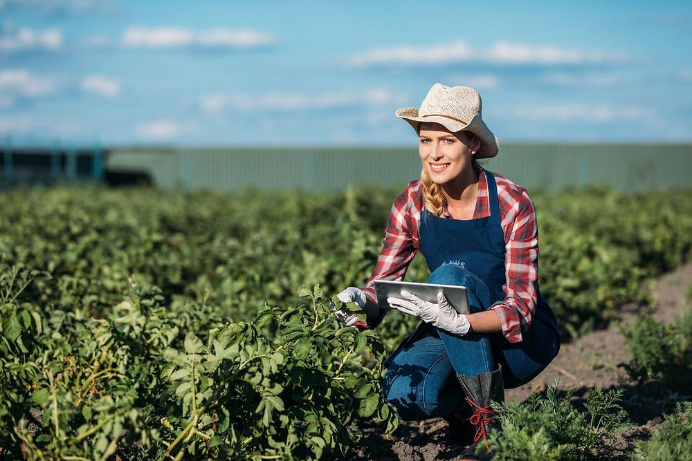mão de obra ruricola, mulher, apontando plantação com uso de tablet. simova