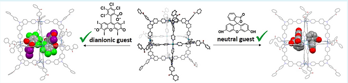 Supramolecular assemblies involving thermally activated delayed fluorescence emitters