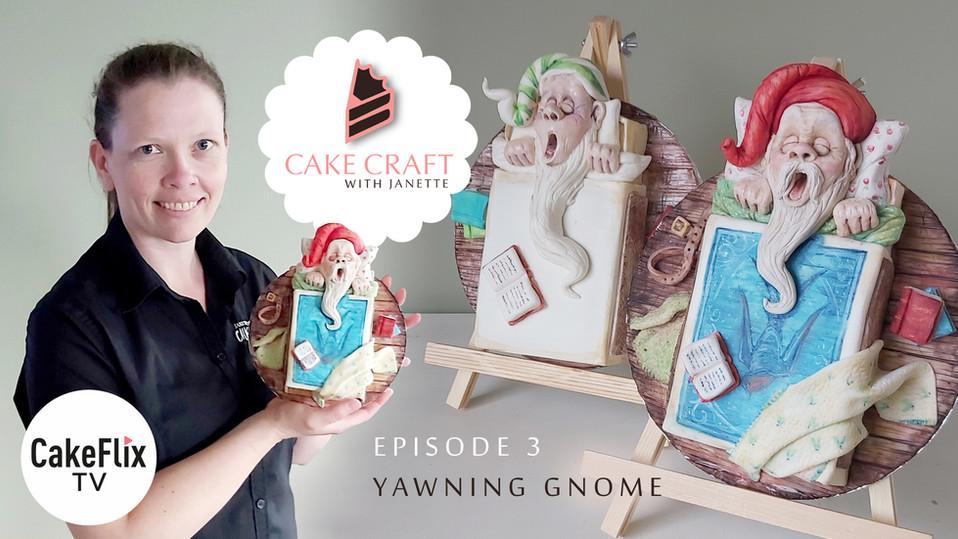 Episode 3 -Yawning Gnome