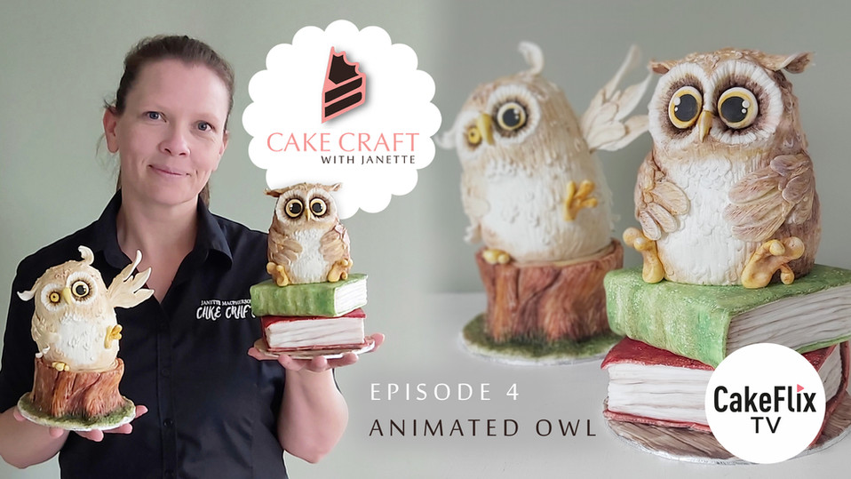Episode 4 - Animated Owl