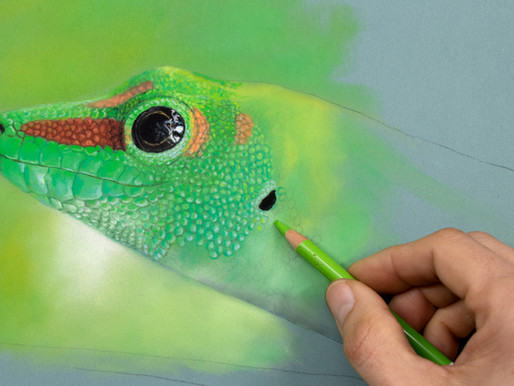 Pastel Painting / Pencil - Reptile scales / Gecko Skin drawing