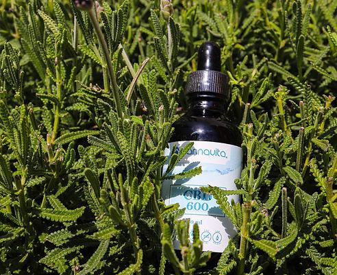 CBD Cannavita, medicina natural