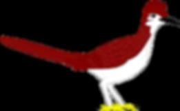 bird-46526_1280.png