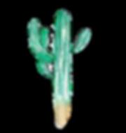 saguaro-cacti-3573675_1920.png