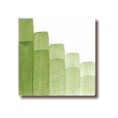 CAV2404 צובען ירוק