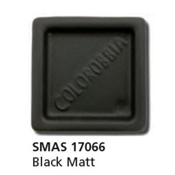 SMAS17066