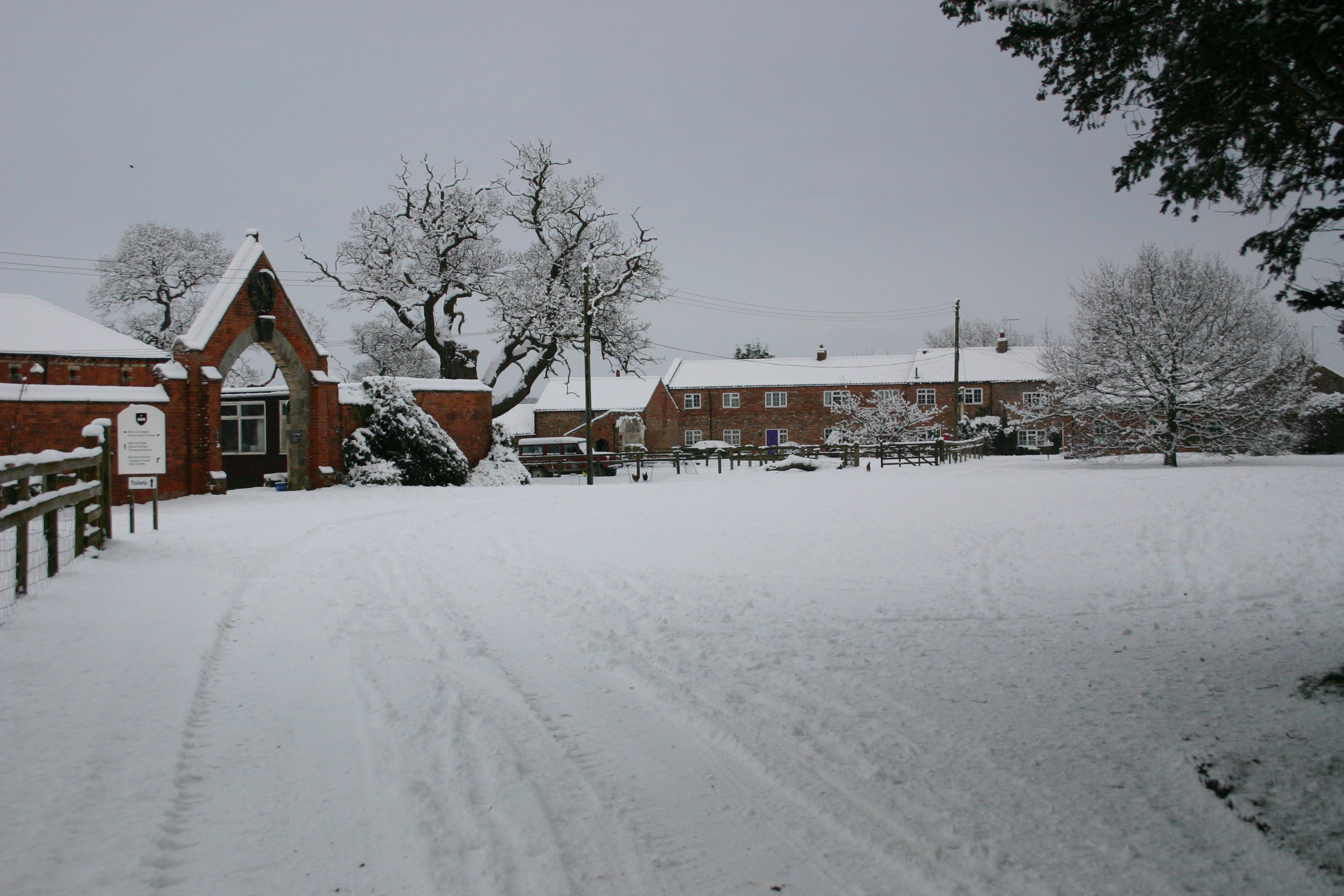 The Oval in snow