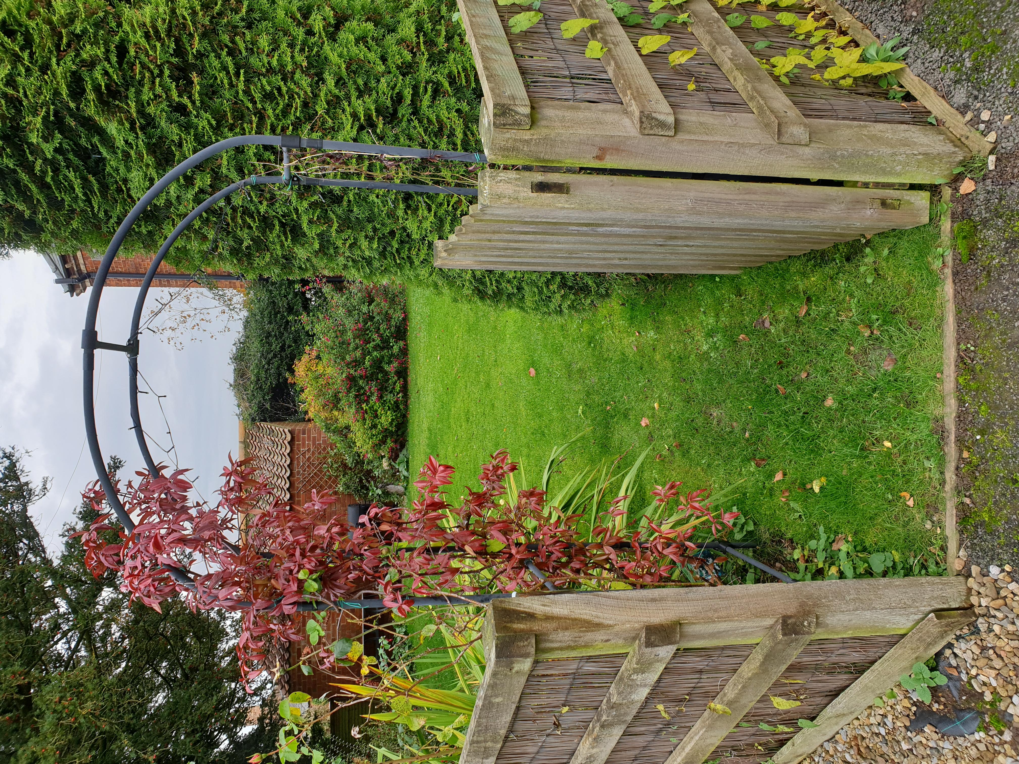 Prince Rupert garden