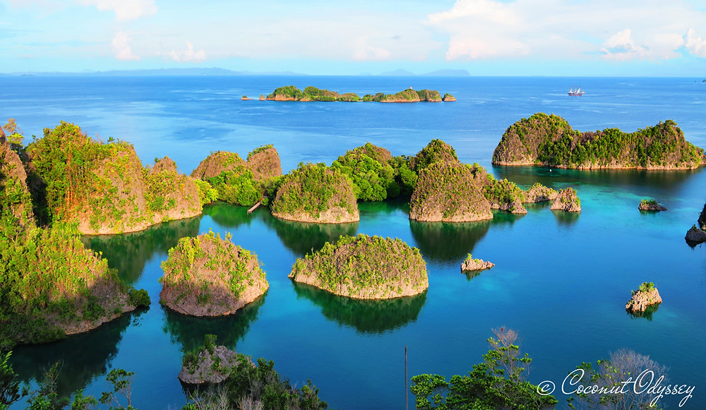 This is the famous picture perfect landscape of Raja Ampat in Indonesia. A group of several islands covered in green palm trees and clustered together which stick out from the rich royal blue ocean and appear to be floating.