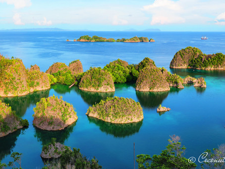 Raja Ampat   Indonesia   The Best Scuba Diving In The World