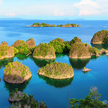 Raja Ampat | Indonesia | The Best Scuba Diving In The World