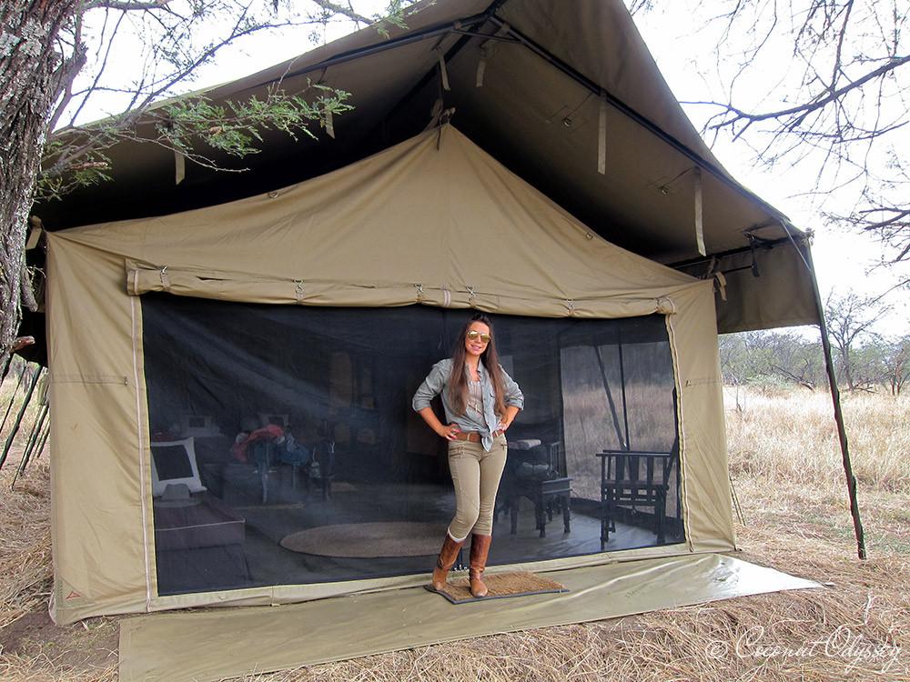 the great wildebeest migration river crossing, safari, Serengeti, Tanzania, Best African Safari, Luxury African safari, Asilia , African Safari