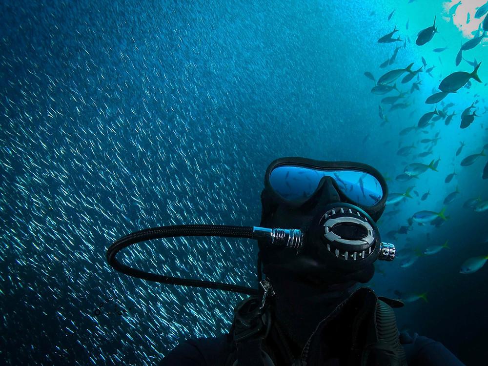 Flowavefilms Underwater Scuba Selfie