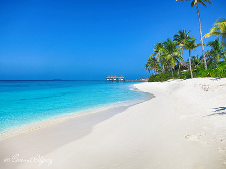 Explore The Maldives   Diving, Relaxation & The Ultimate Paradise