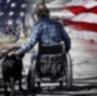 Man on wheelchair with guide dog concept
