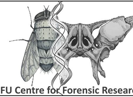 Blowflies and Butterfly Bones