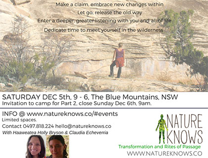 supported-wilderness-medicine-walk-blue-mountains-haaweatea-claudia-echeverria