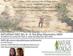 supported-wilderness-medicine-walk-blue-mountains-haaweatea-claudia-echeverria