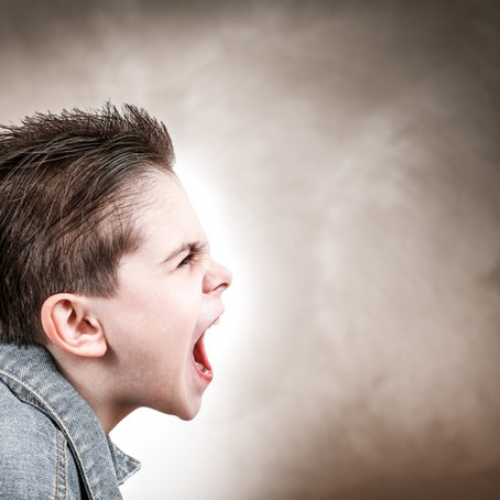 Développement de l'agressivité physique de l'enfant.