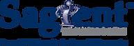 Sagient Technologies Logo