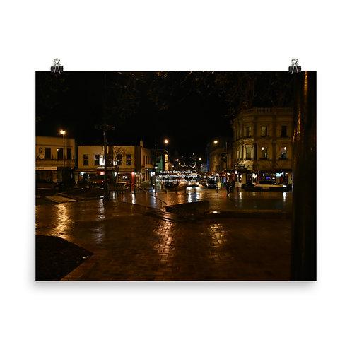 Downtown Dunedin Poster