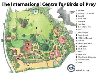 Birds of Prey Centre Plan