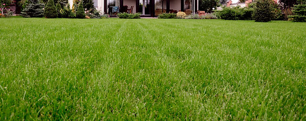 Lawn maintenance Saxonburg Butler Mars Pittsburgh Wexford Cranberry Seven Fields