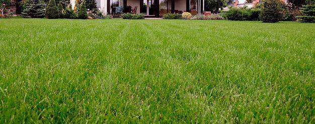 Lawn maintenance Saxonburg Butler Mars Pittsburgh Wexford Cranberry Seven Fields