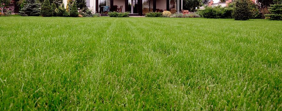 Faixa de gramado