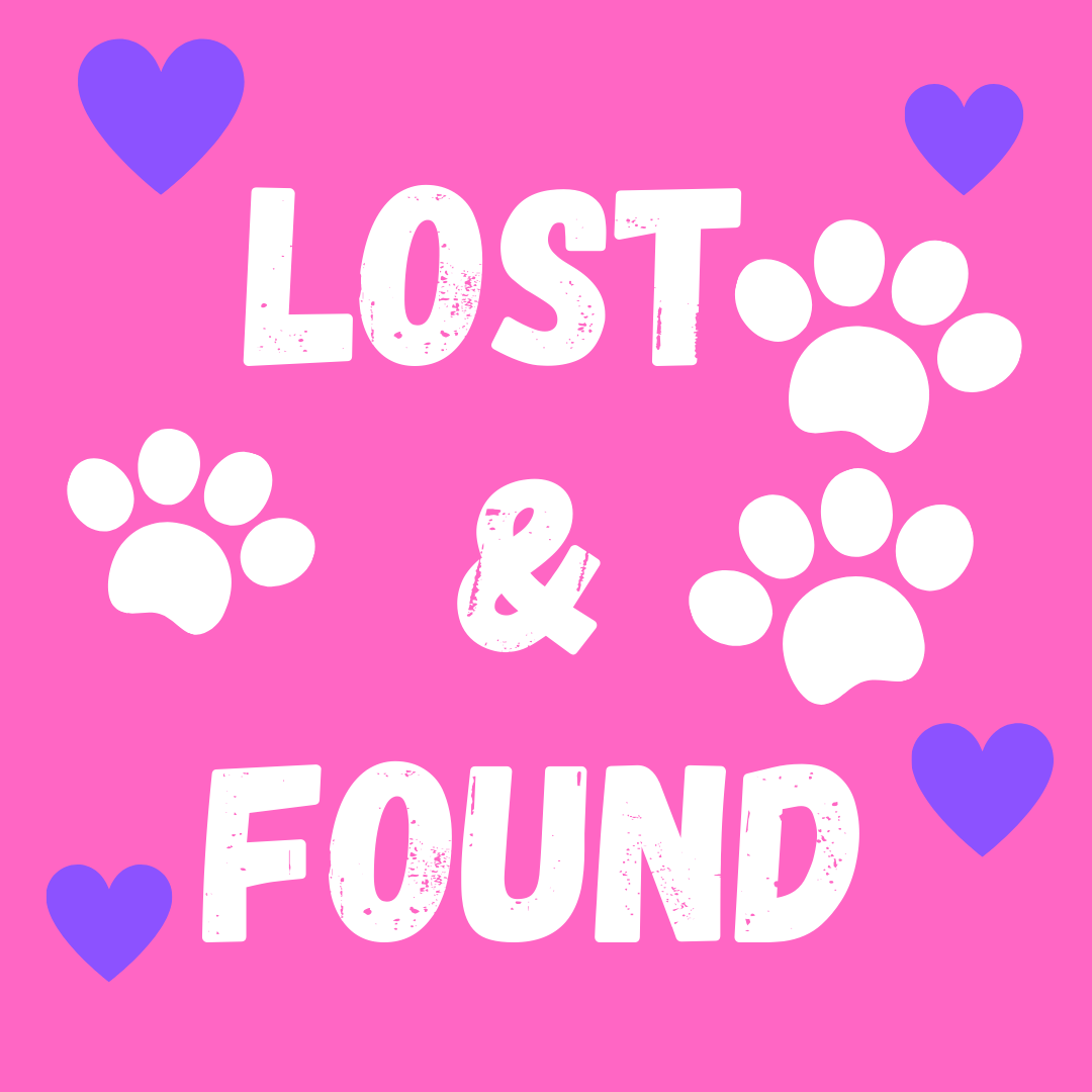 Lost & Found (7).png