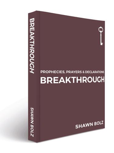 Book Binding-Breakthrough-MockUps Shawn