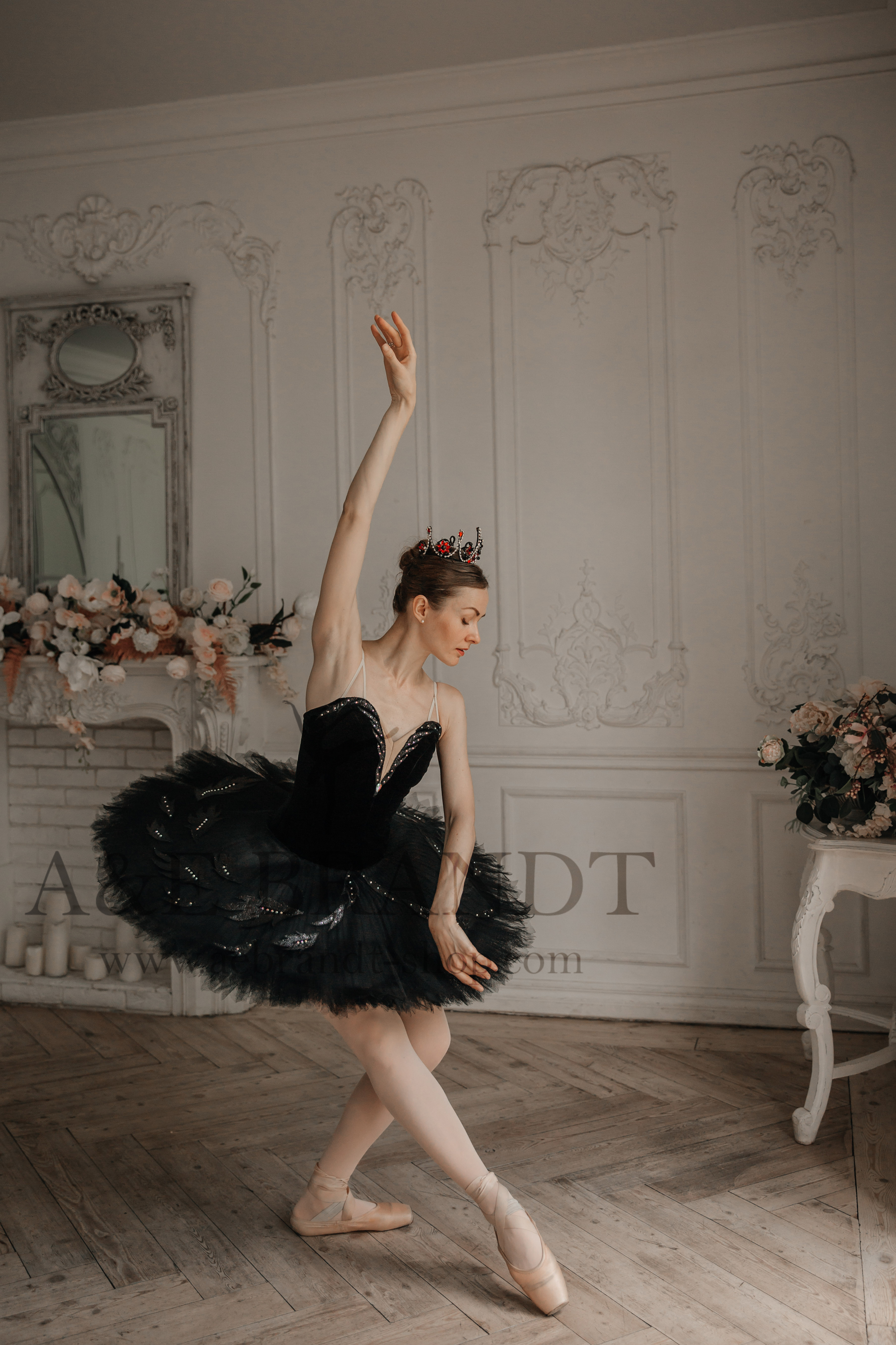 Odette Swan Lake Ballet Female Tutu 920.