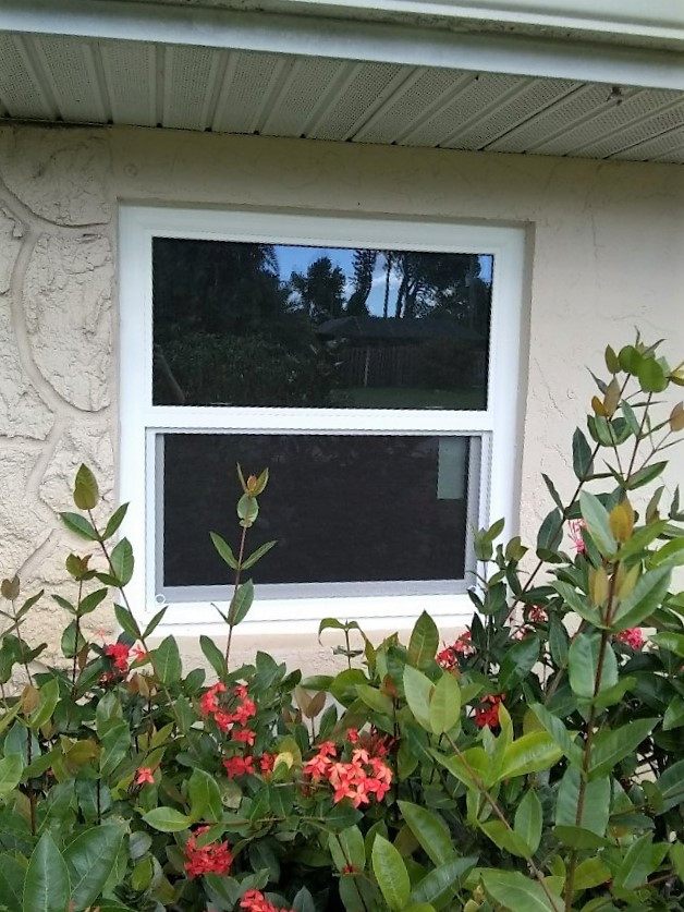 pgt impact single hung hurricane window