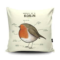 Anatomy of a Robin Cushion.jpg