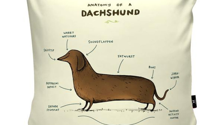 Anatomy of a Dachshund Cushion