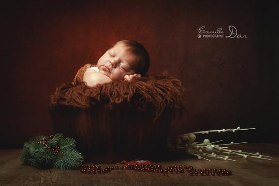 Mini-Séance Noël