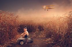 corn_field_1_by_stickfishies_stock_d1p7j