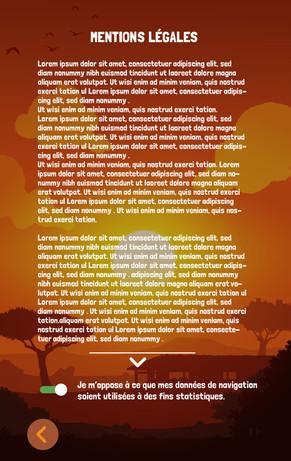 ECRAN MENTIONS LEGALES.jpg