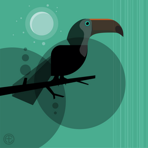 Abstract Toucan