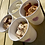 Thumbnail: Cookie Dough Pots (x2) Locally delivered/posted on Saturday 8th May)