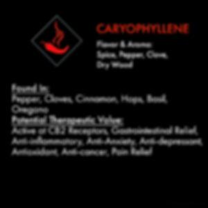 Carophyllene_web.jpg