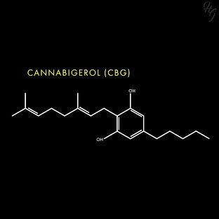 CBG_molecule.jpg